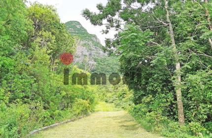Beau terrain de 47 perches dans un morcellement sécurisé à Moka