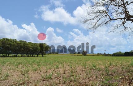 Terrain de 629 m2 / 15 perches / 165 toises à vendre dans un morcellement à Beau Vallon - Côté Mer