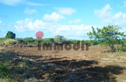 À vendre, St Antoine Nord, dans un beau morcellement résidentiel, terrain agricole de  4827m2 /  1  Arpent 12