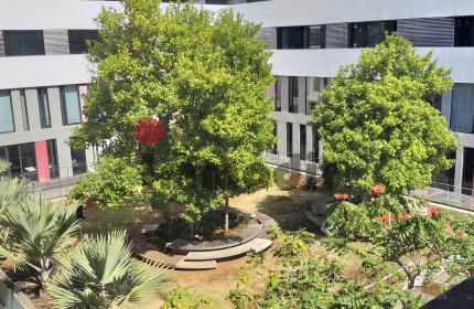 Business hub et centre d'affaire moderne et conviviale avec jardin et restaurant à Ebene