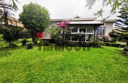 A 5 minutes d'Intermart maison de 4 chambres avec un beau jardin arboré sur terrain de 200 toises à vendre à Curepipe